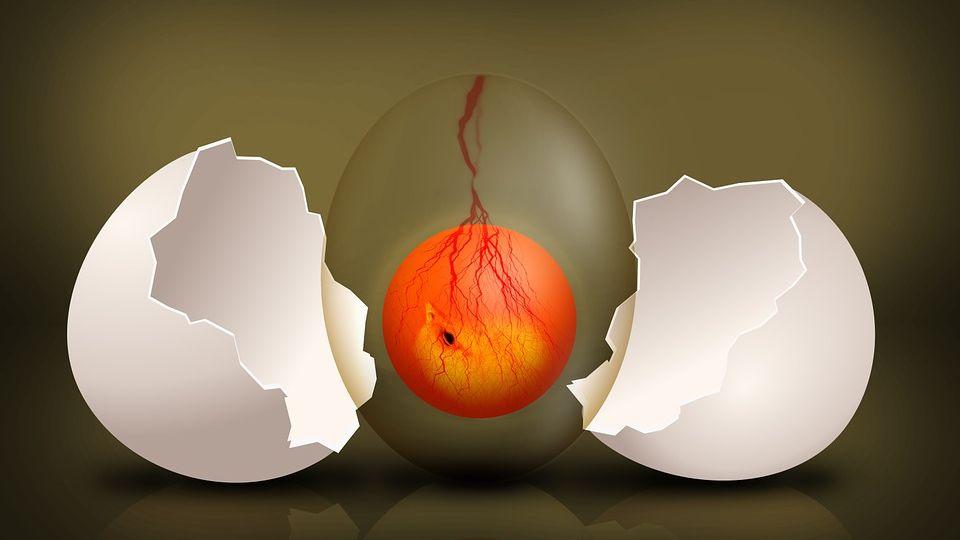 Снятие заговора яйцом