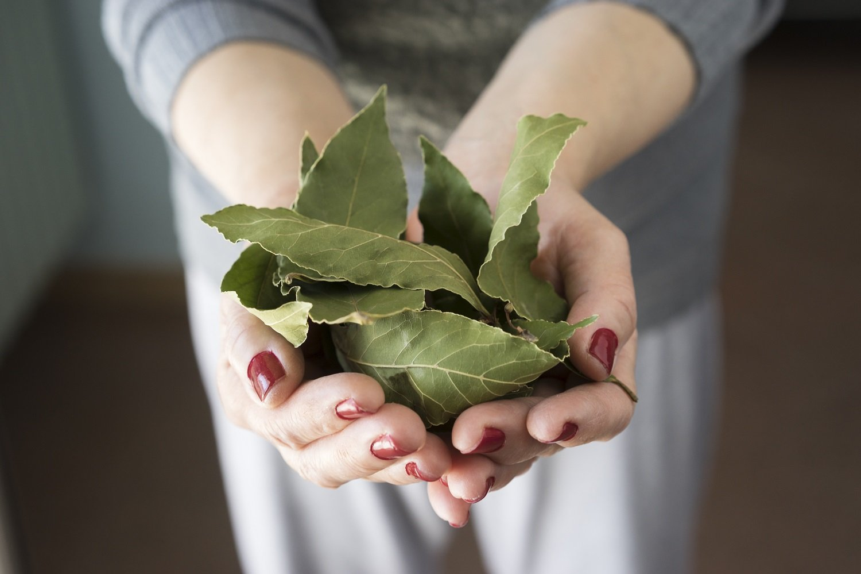 Денежное желание на лавровом листе