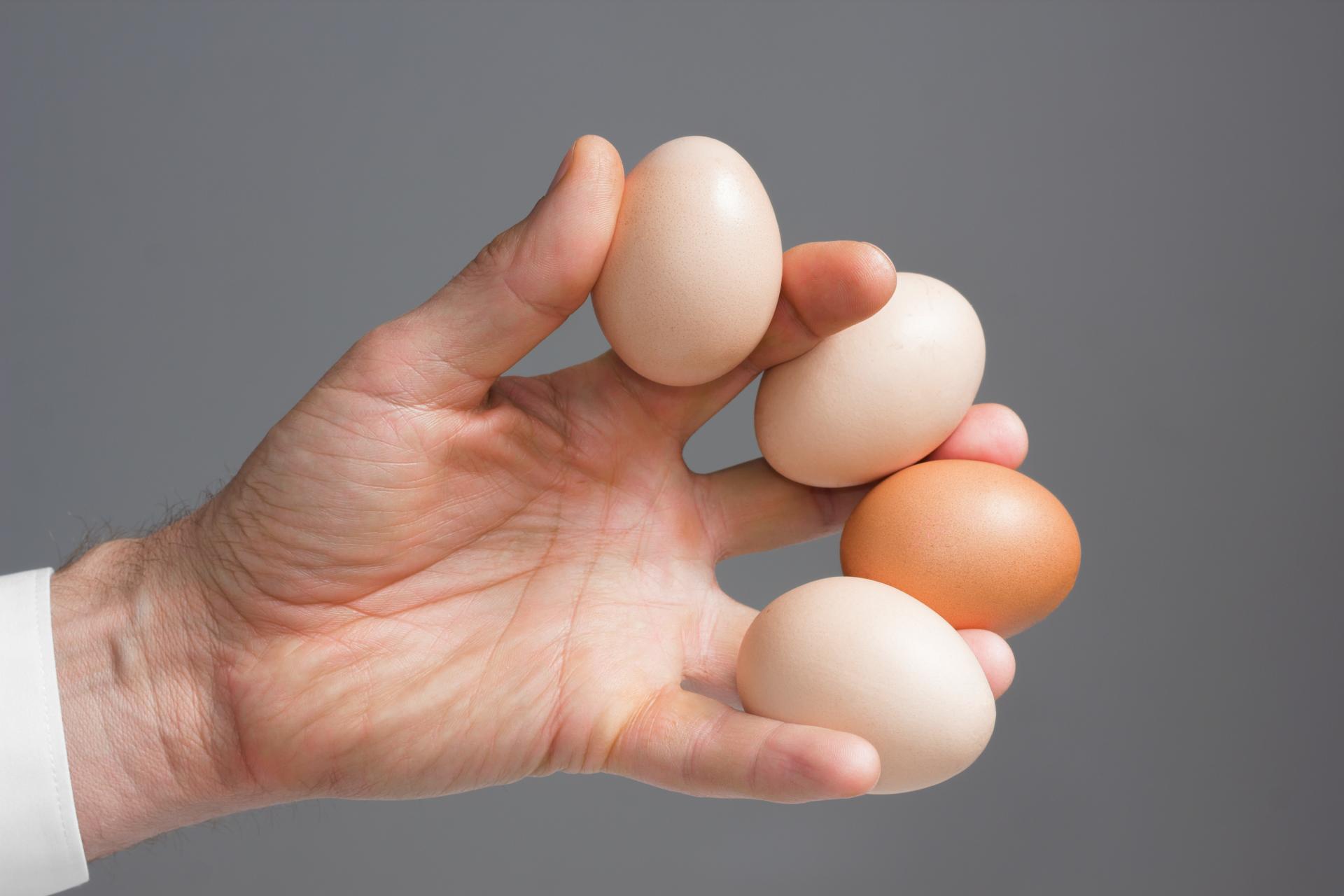 Заговор с яйцом, чтобы выиграть крупную сумму денег